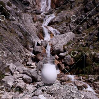photo κανάτα με Γάλα P-10008